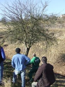 foto Rosato 2011 002